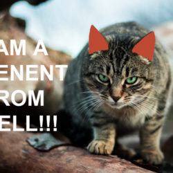 A Tenant From Hell And How To Deal With Them